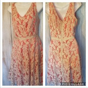 Danny & Nicole fit and flare size 6